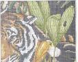 Обитатели джунглей3