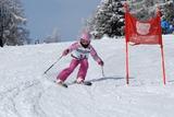 Моя горнолыжница (соревнования по слалому)