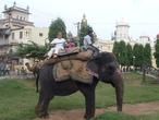 с моей бабулей даже на индийском слоне не страшно прокатиться