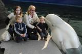 В дельфинарии с белухой