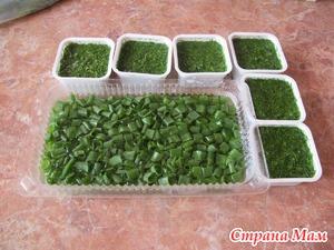 Заготовка зелени: укропа, петрушки и др.