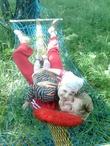 хорошо с мамой отдыхать-на природе в гамаке лежать)))