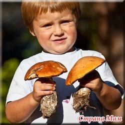 Грибы в детском питании.