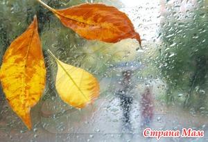 Осень, господа, пора одомашниваться...