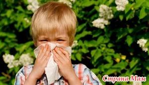 Сезон аллергии - поллиноз