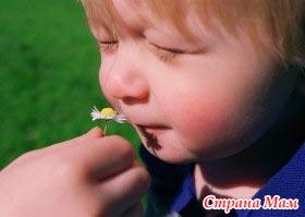 Аллергия к сорным травам