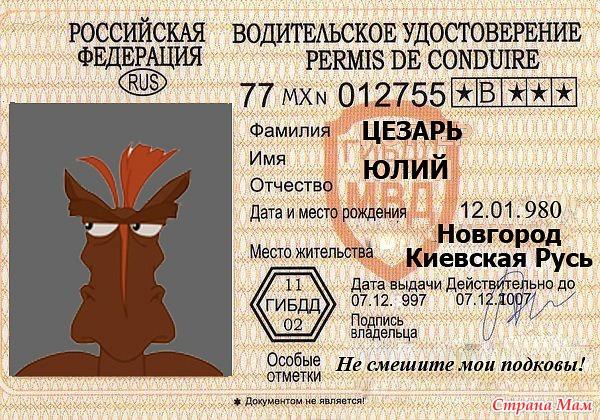Картинки прикольные водительские права