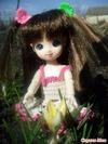 BJD и другие шарнирные куклы