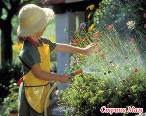 Помощь при пыльцевой аллергии