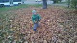 Листопад, листопад, Листья кружатся, летят. Мы за ними побежали, Но никак их не догнали. В парке будем мы гулять, В букеты листья собирать.