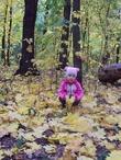 Сколько листьев!!!
