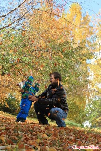 Жёлтые листья кружатся и падают...