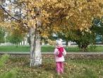 Золотая осень!Прогулка с внучкой!