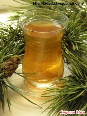 Сосновый чай продлевает жизнь!