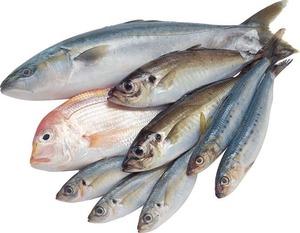 Мамины хитрости: как накормить ребенка рыбой
