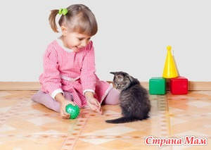 Особенности диагностики и лечения болезни кошачьей царапины.