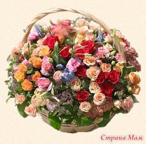 Какие цветы нельзя держать дома, если…