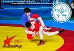 ВНИМАНИЮ СМИ! Приглашаем на Фестиваль спортивных единоборств «Юный Динамовец»