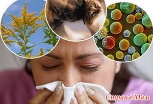 Группы препаратов при аллергии.