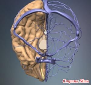 Что делать при нарушенном оттоке в венах головы?
