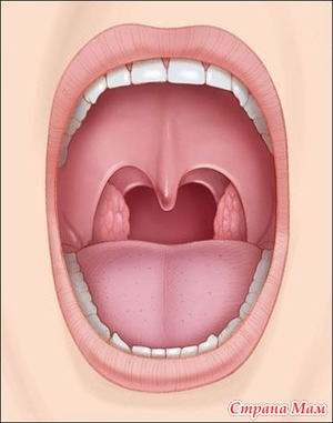Проявление патологий эндокринной системы в полости рта ребенка