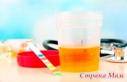 Патологии, приводящие к повышению белка в моче у беременных