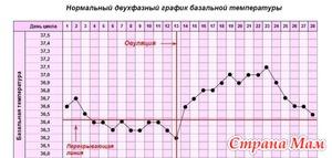 График базальных температур: зачем он нужен?