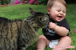 Дети и животные в доме: плюсы и минусы