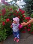 Знакомство с царицей цветов ☺😘