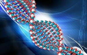 Генетика: тестировать или нет?