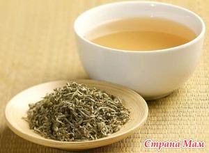 Какие полезные свойства есть у белого чая