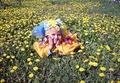 #Мой солнечный цветочек