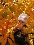 Первая  золотая осень.