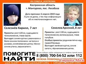 В Костромской области пропали дети (7 и 8 лет). ДОПОЛНИЛА