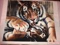 Тигрёна Полосатая