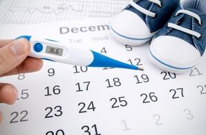 Как рассчитать день зачатия ребенка по овуляции?