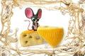 Мышастик с сыром