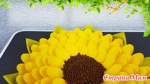 Делаем цветок из пластиковых ложек и кофейных зёрен