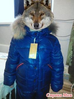 Комплект зимний брючки+курточка на мальчика
