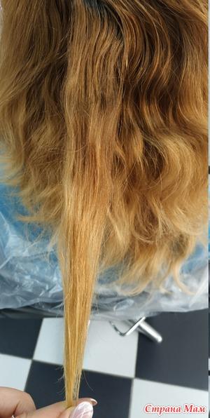 Холодный бежевый блонд без осветления : как его сделать