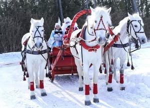 Начались съемки новогоднего музыкального фильма «Хроники Деда Мороза. Тайна подарков»